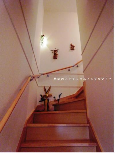 228_convert_20121029142239.jpg