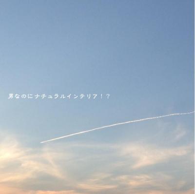 229_convert_20121029142251.jpg