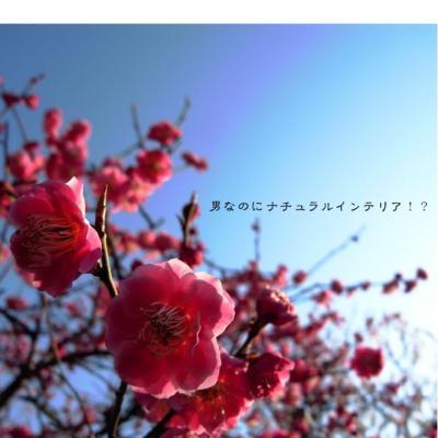 22_convert_20120329172308.jpg