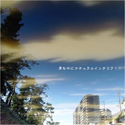 243_convert_20111027203715.jpg