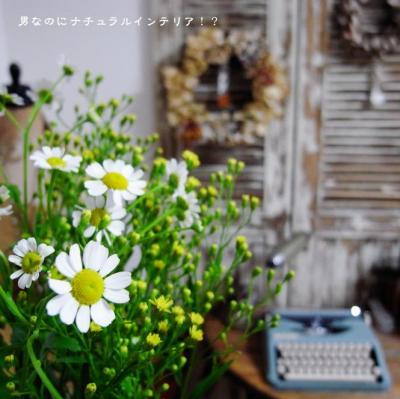 29_convert_20120408202900.jpg