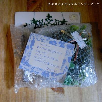 371_convert_20120112222036.jpg