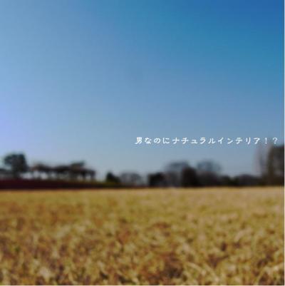 38_convert_20120411223242.jpg