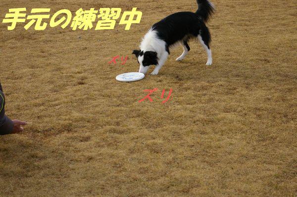 2012.1.1初投げ練002