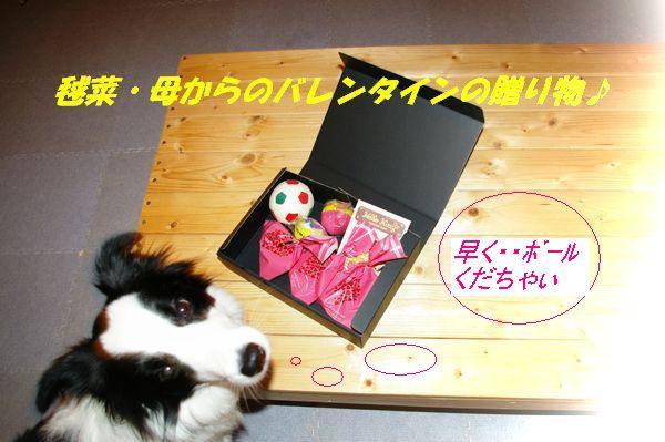 毬菜ママからのプレゼント001