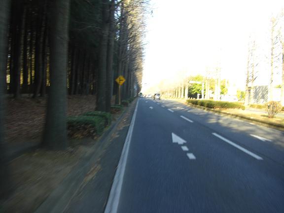 20131214朝日峠 (3)