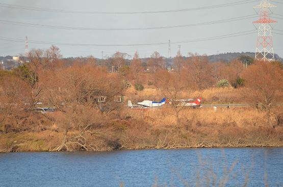 20131229白鳥の郷 (5)