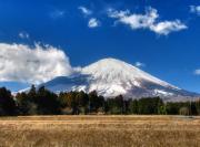2011_01_31 富士霊園