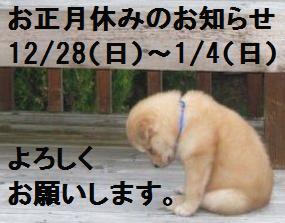 いぬ2014