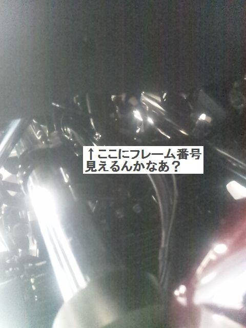 DVC00011AA.jpg