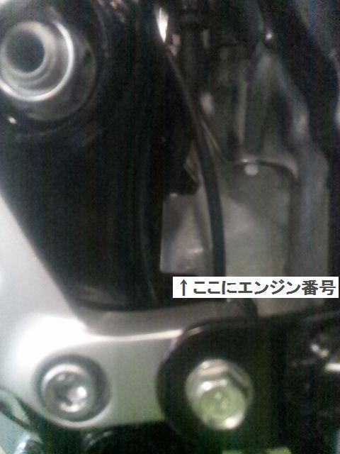 DVC00014AA.jpg