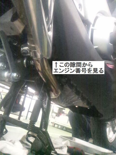 DVC00016AA.jpg