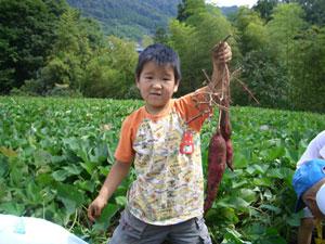 園芸ランド芋ほり