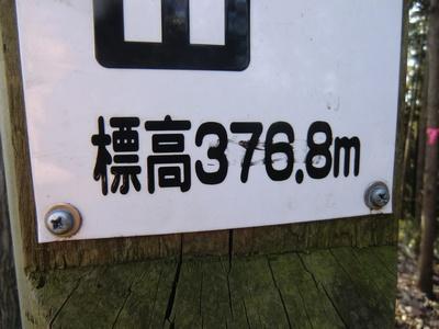 CIMG3927.jpg