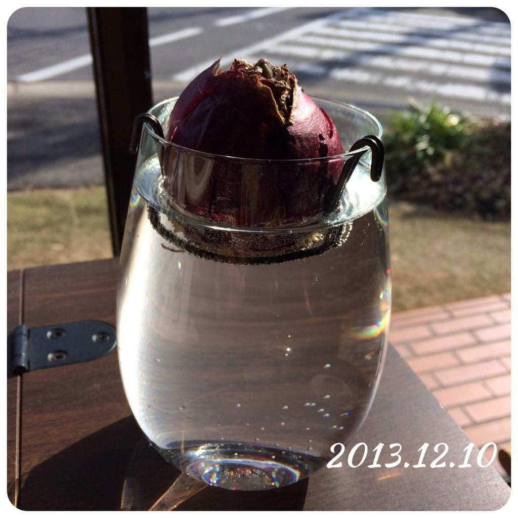20131210.jpg