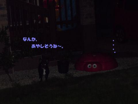 まる&みかん 100724花火 013ブログ