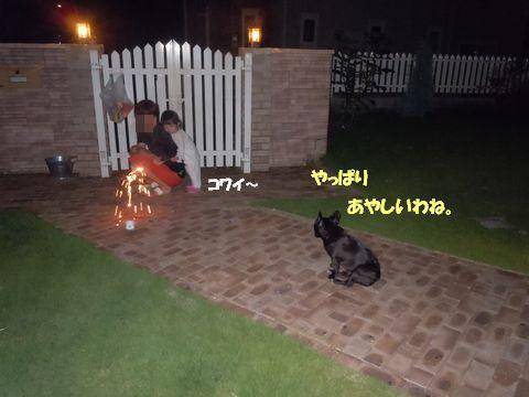 まる&みかん 100724花火 039ブログ