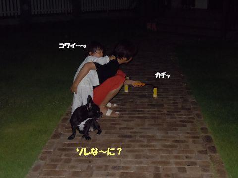 まる&みかん 100724花火 046ブログ