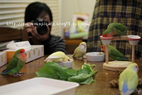 お食事TIME