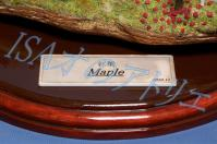 Maple029-R.jpg