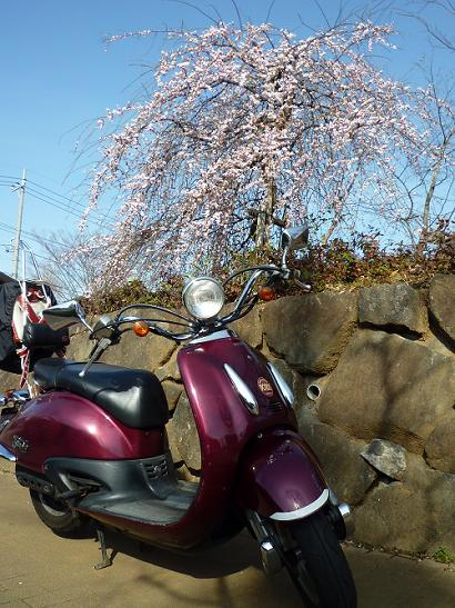 2011_0225戸田別館 0004