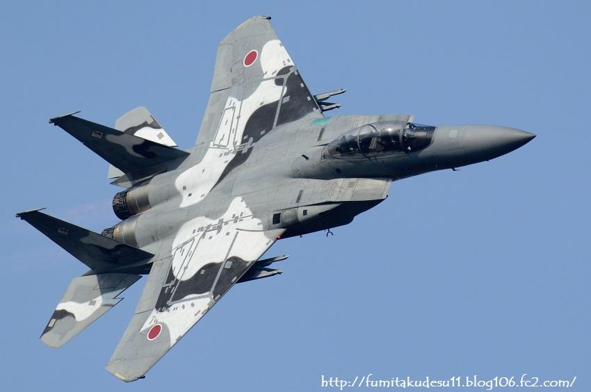 251201新田原基地航空際1 (16)