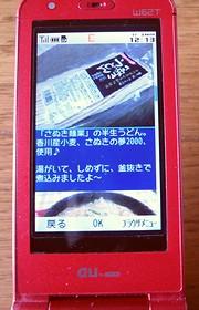 携帯WEB