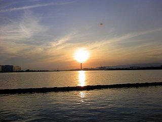 sakaihamayuhi.jpg
