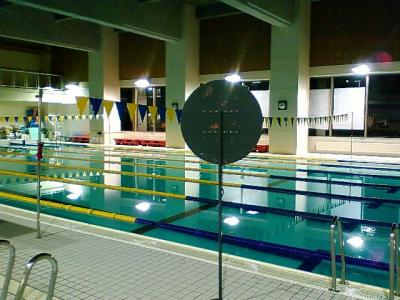 大会前日のプール