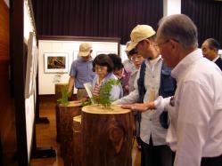 木曽五木の展示コーナー