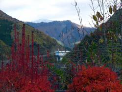 紅葉と遠くには鉢盛山