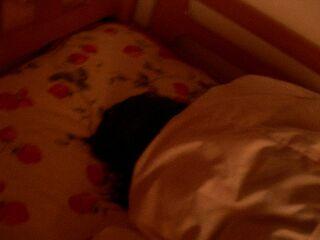 寝食べちゃん
