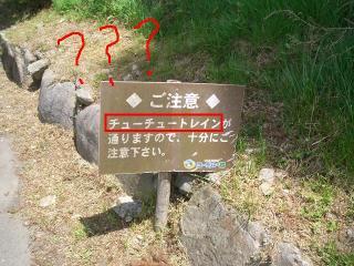 ちゅーちゅーとれいん!?