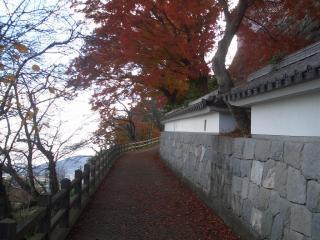 晩秋の紅葉が素晴らしい