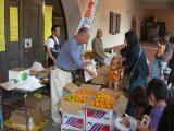 果物の直売