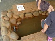 金の湯の足湯
