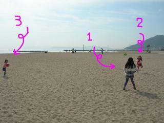 砂浜で遊ぼう!