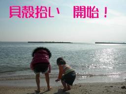 貝殻集め2