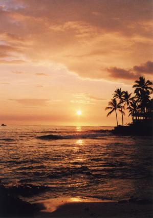 hawaitou3_20111030153957.jpg