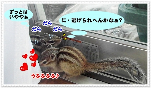 l2011410-11-5
