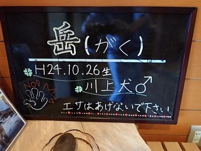 2014111818.jpg