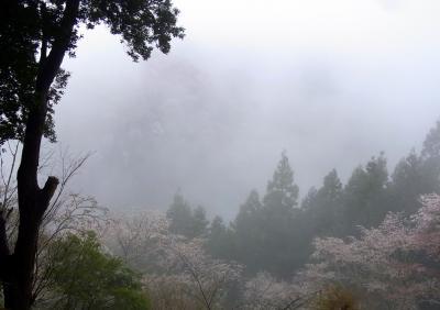 120414朝の風景