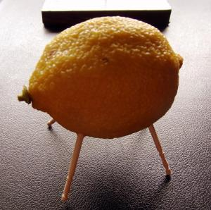お前、レモンのいのししなのか!