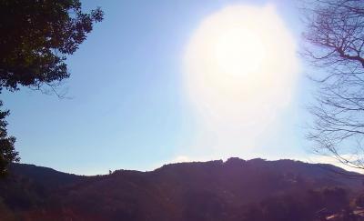 20111231の朝