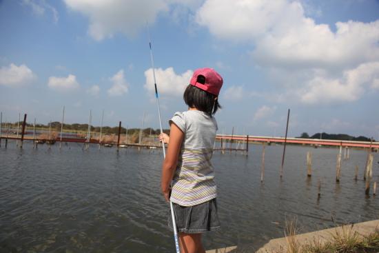 022魚釣り