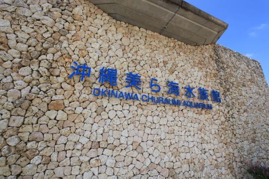 沖縄 118