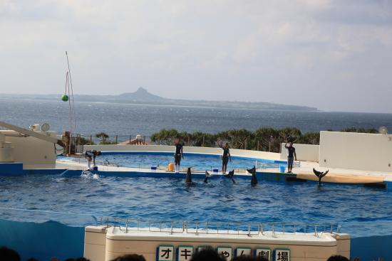 沖縄 161