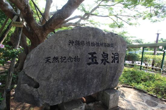 沖縄 257