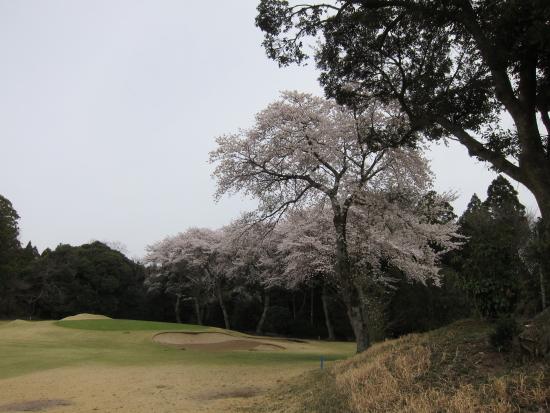ゴルフ野球 006