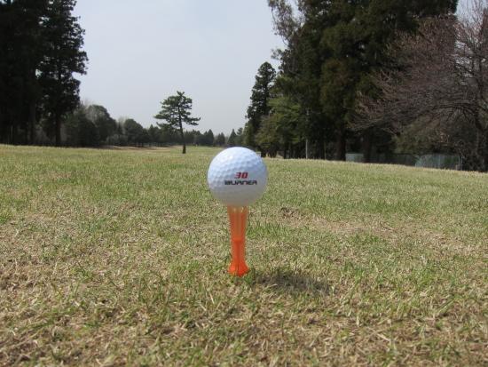 ゴルフ野球 001